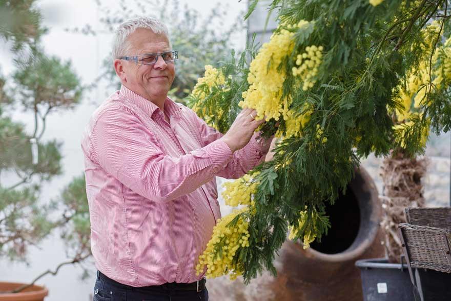 Over harrie boerhof hoveniersbedrijf boomkwekerij for Tuinontwerper gezocht
