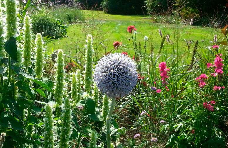 Wat kost het aanleggen van een tuin for Wat kost een tuinontwerp